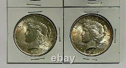 A Lot of 4 $1 1924-P Silver Peace Dollars, in Card Holders